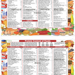 PROTEIN CONTENT OF FOODS